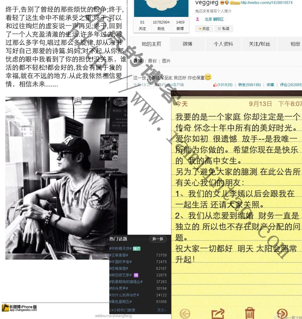 王菲李亚鹏离婚 汪峰离婚